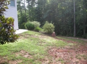 Weed Removal ATL