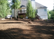 Backyard Landscaping ATL