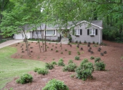 Front Yard Shrubs
