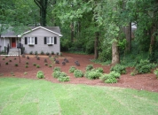 New Yard Makeover ATL